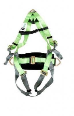 Arnes Msa Workman 3 Argollas Proteccion Lumbar